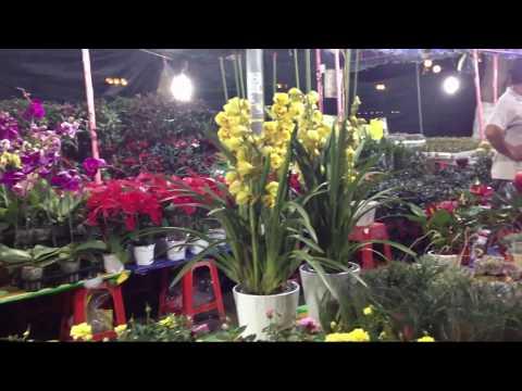 Kết quả hình ảnh cho chợ hoa Mỹ Tho