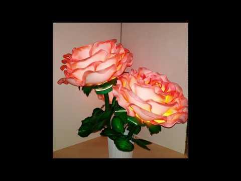Светящийся розы. Фото видео анонс.