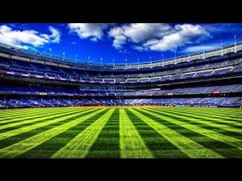Watch Dogs Baseball Stadium