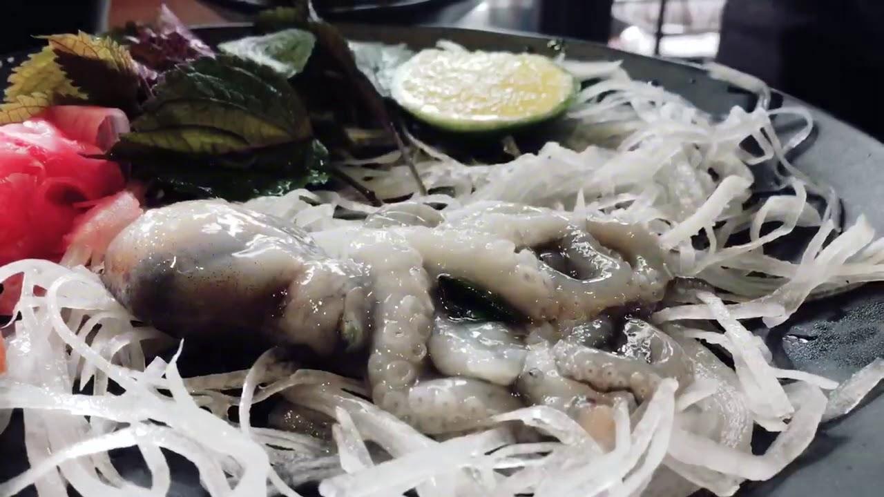 ĂN BẠCH TUỘC SỐNG BÒ TRÊN ĐĨA | Hà Nội 2017 | Ăn cả thế giới