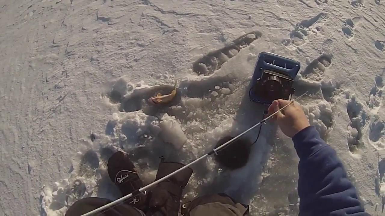 Ice fishing iowa panfish youtube for Ice fishing iowa