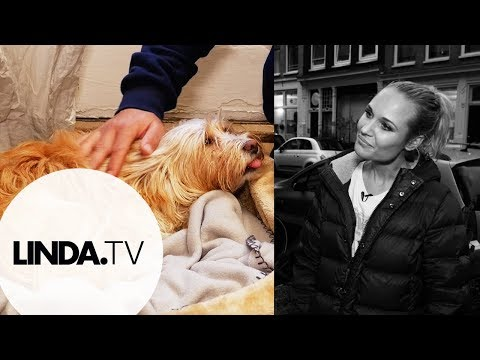 Géza Weisz  Bekende Baasjes  LINDA.tv