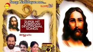 Download Hindi Video Songs - Nallidayan nee -  Sneham
