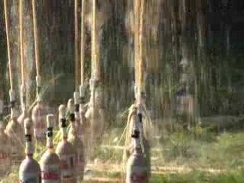 Extreme Diet Coke & Mentos Experiments II: The Domino Effect - YouTube