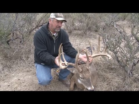 Another Big Buck Down, Hunting In Old Mexico