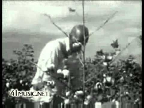 Zero Prophet - Song from the Cotton Field