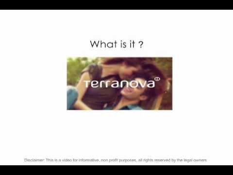 Online marketing/e-commerce initiative. Case study: Terranova