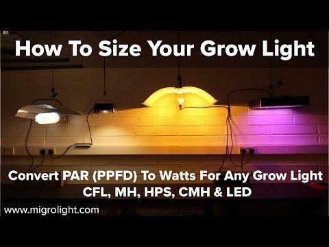 How big a grow light do I need? - How to convert PAR (PPFD) to grow light  Watts for your grow area