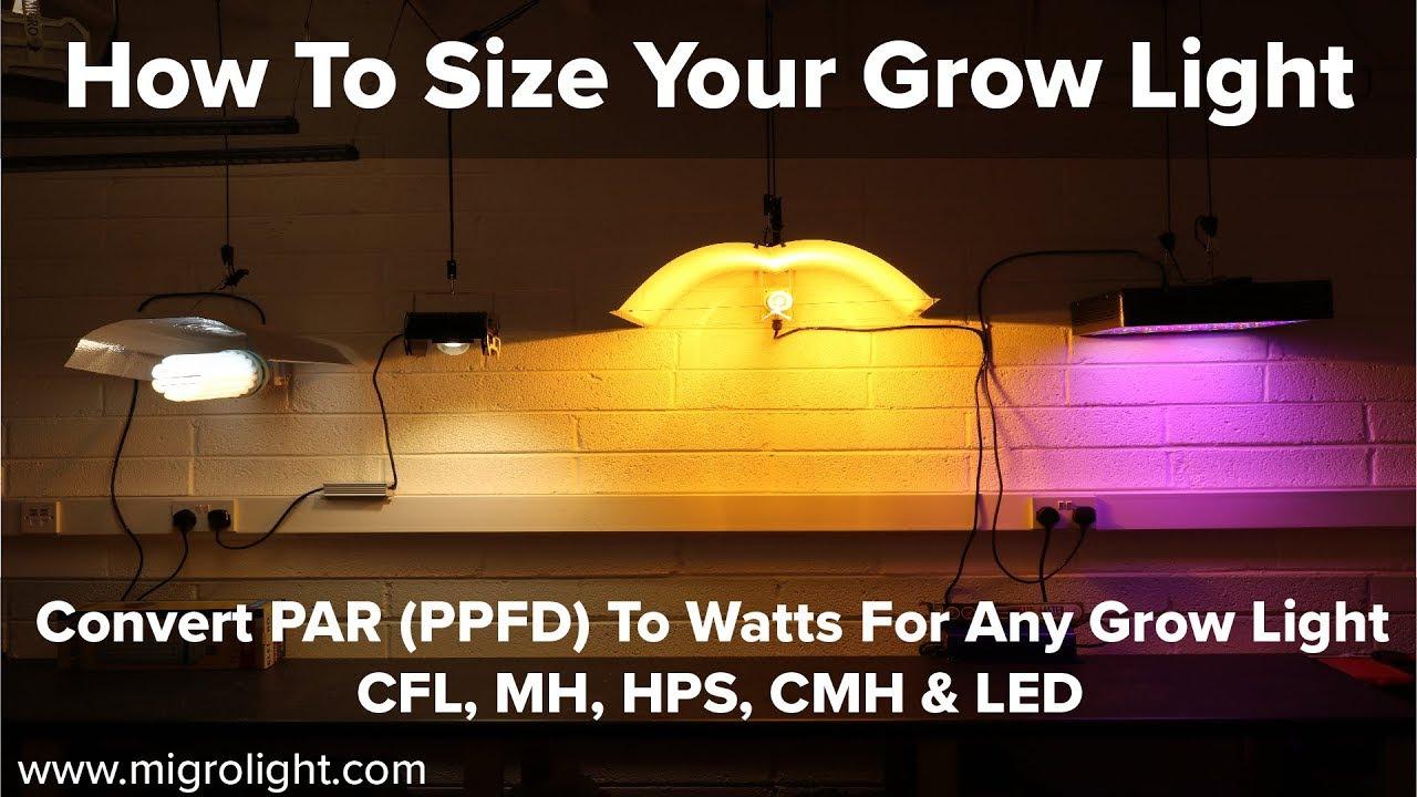 How big a grow light do I need? - How to convert PAR (PPFD) to grow light  Watts for your grow area