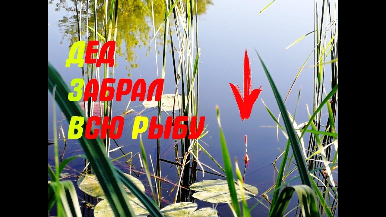 Рыбалка на карася осенью на поплавочную удочку видео