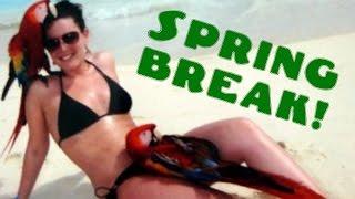 13 Strange Spring Break Photos You Won