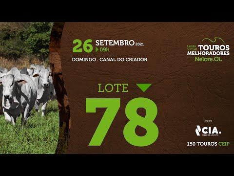 LOTE 78 - LEILÃO VIRTUAL DE TOUROS 2021 NELORE OL - CEIP