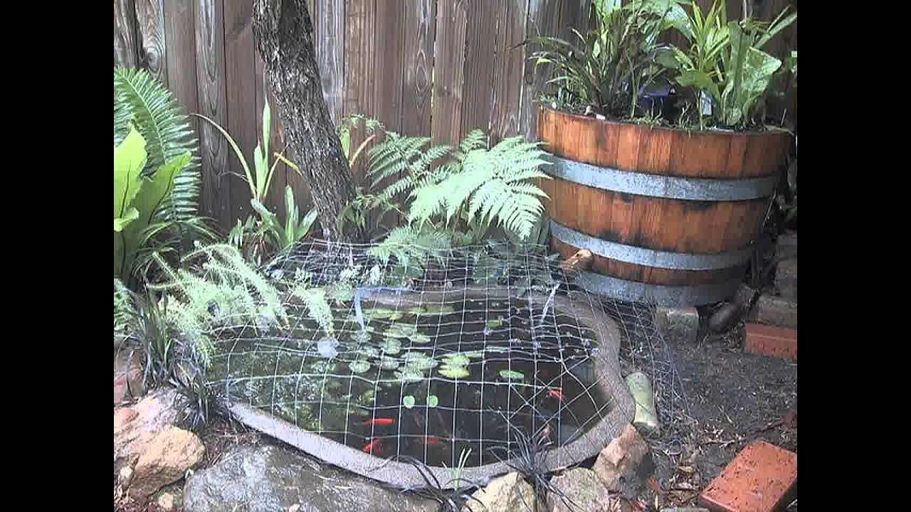 Small home garden fish ponds ideas youtube for Goldfish pond ideas