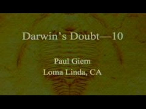 Darwin's Doubt (Part 10) 11-30-2013 by Paul Giem