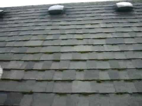 Roof Moss Growth Amp Zinc Strips 3 Roof Life Of Oregon
