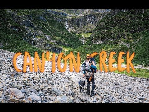 Canyon Creek | Ahuriri