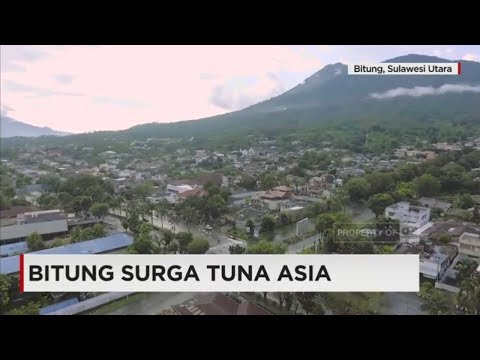 Bitung Surga Tuna Asia
