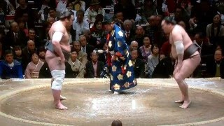 January 2016 - Day 6 - Hakuho v Tochinoshin