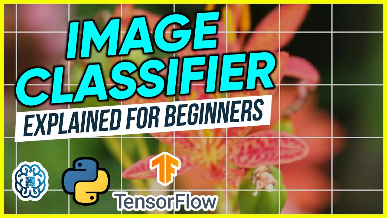 Image Classification Explained for Beginners