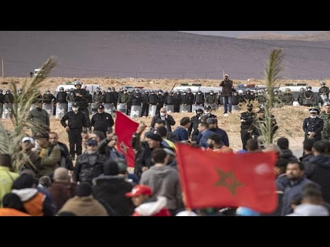 Morocco farmers mourn loss of date palms in border standoff