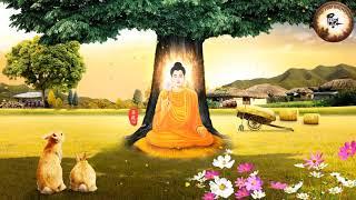 Khi cuộc sống Khó Khăn Khổ Cực HÃY NẮM THẬT CHẶT 99 Lời Phật Dạy này | Phật Pháp Nhiệm Màu