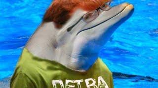 Hank Green Becomes A Virtual Dolphin! | Classroom Aquatic | Oculus Rift Game