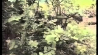 13.6.1993.: Novi Travnik, Kakanj, Konjic, Mostar: Napadi na hrvatske položaje