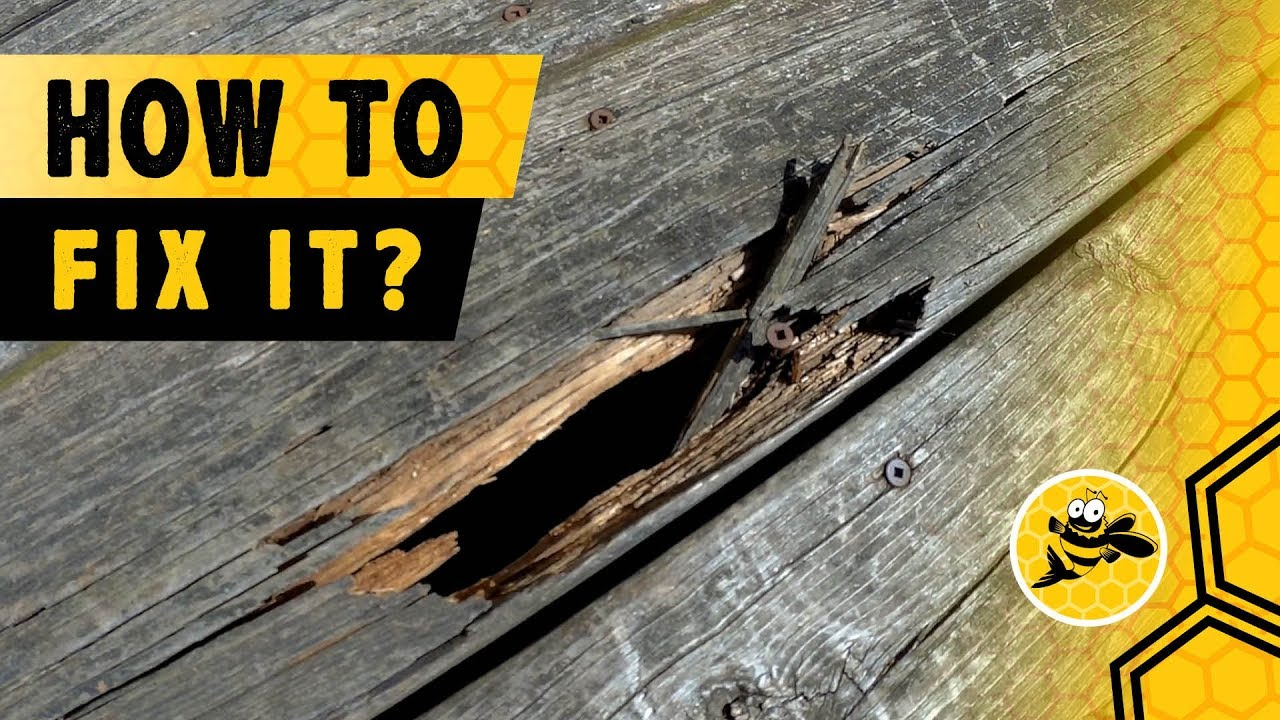 Repair Damaged Deck Boards That Rot