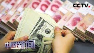 [中国新闻] 新闻观察:中国外汇市场供求保持基本均衡 | CCTV中文国际