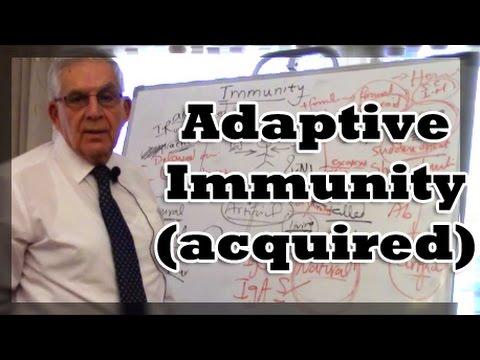 Adaptive Immunity (acquired)