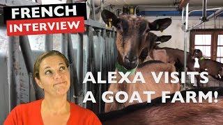 Alexa visits a French Goat Farm !