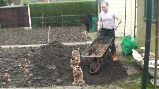 On The Allotment - Preparing a Runner Bean Trench