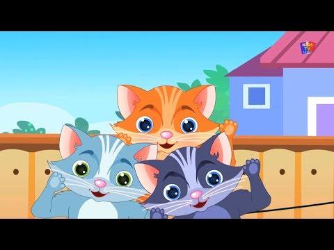 Котята играют мультик из игрушек. Мультфильмы для детей про животных