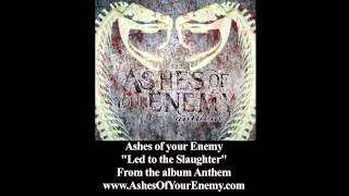 "Ashes of your Enemy ""Led to the Slaughter"""