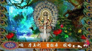 真佛宗金剛歌 「孔雀明王心咒」Mahamayuri Mantra