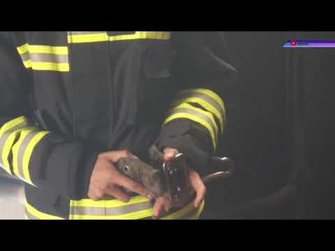 МТВ-плюс Мелитополь: Через пожежу мати з п'ятьма дітьми лишилася без житла