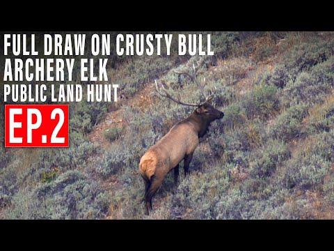 FULL DRAW ON AN OLD CRUSTY BULL ELK | 4K | EP 2 | PUBLIC LAND