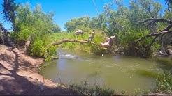 Rio Verde | Arizona