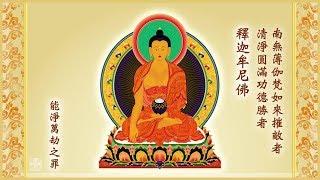 《三十五佛懺 》福智藏文新譯 問訊版