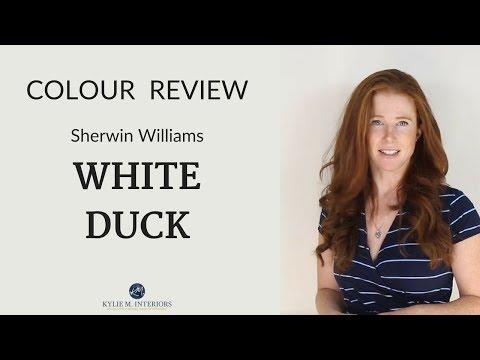 colour-review:-sherwin-williams-white-duck