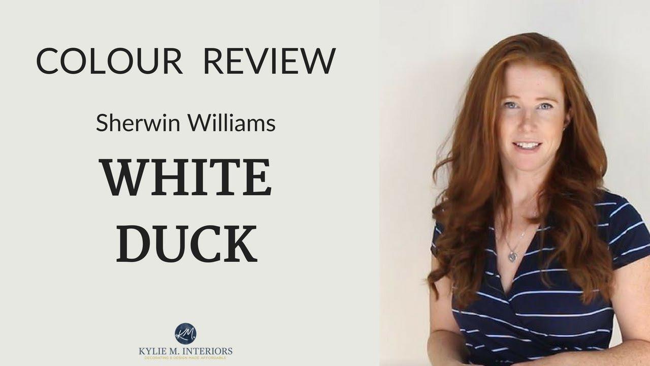 Sherwin Williams White Duck