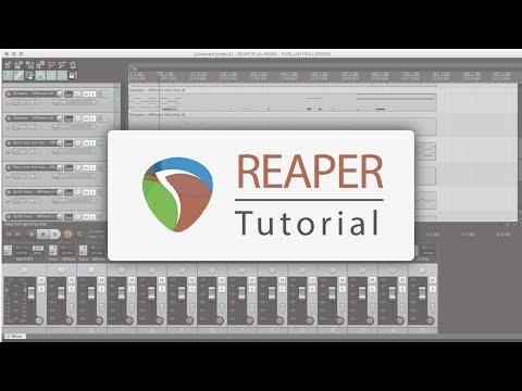 Reaper - tutorial ITA - Panoramica generale, importazione e taglia-copia-incolla audio