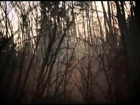 Peacemaker : Holy Blood of Angels (Grindcore Karaoke Edit)