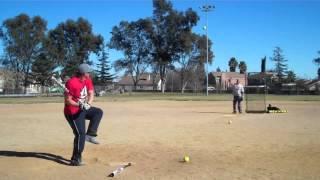 2014 demarini stadium cl22 usssa 8 home runs pastor larry brand