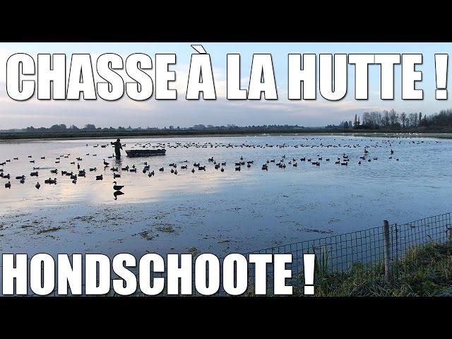 Chasse à la Hutte dans le Nord : Hondschoote ! - Marius Chasse