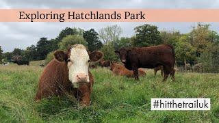 Hatchlands Park Surrey | Exploring during Autumn | Hit the Trail