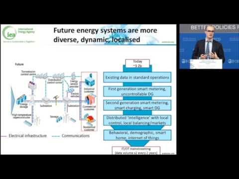 Presentation by Mr. Luis Munuera, Smart Grids Technology Lead, International Energy Agency (IEA)