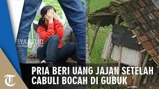Download Video Bocah Dicabuli Pria di Gubuk lalu Diberi Uang Jajan Rp4 Ribu MP3 3GP MP4