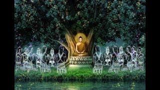 Buddha's life (English)