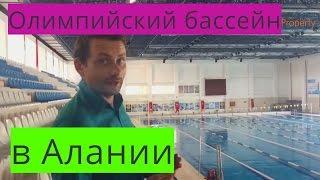 видео Плавание вольным стилем — SportWiki энциклопедия